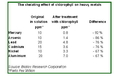 what is chlorophyll, Skeleton